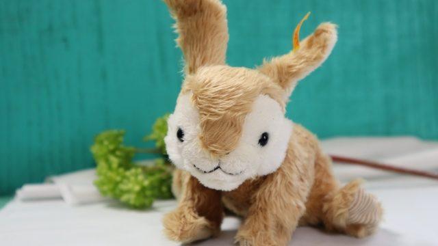 うさぎのおもちゃは100均で揃う?うさぎの好きなおもちゃとは?